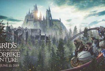 "Universal's Newest Harry Potter Attraction Goes ""Full Hog"""